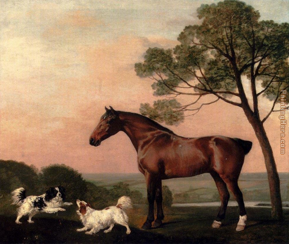 George Stubbs A Bay Hunter With Two Spaniels Art Painting