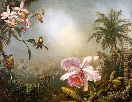 Martin Johnson Heade Orchids Nesting Hummingbirds and a Butterfly Art Painting