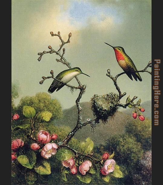 Martin Johnson Heade Ruby Throat of North America Art Painting