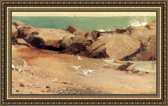 Winslow Homer Rocky Coast and Gulls Framed Painting